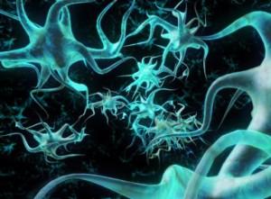regenerating nerves